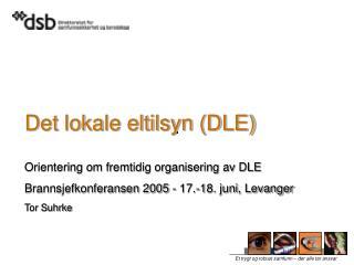 Det lokale eltilsyn (DLE)