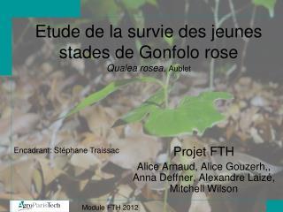 Etude de la survie des jeunes stades de Gonfolo rose Qualea rosea,  Aublet