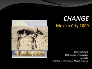 CHANGE  Mexico City 2009