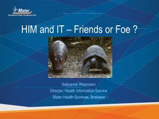 HIM and IT – Friends or Foe ?