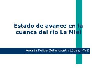 Estado de avance en la cuenca del río La Miel
