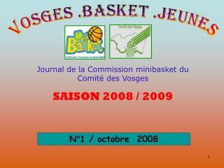 Journal de la Commission minibasket du Comité des Vosges SAISON 2008 / 2009