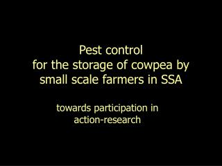 Pest control  for the storage of cowpea by small scale farmers in SSA