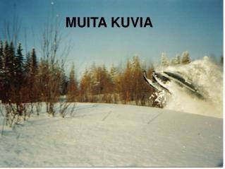 MUITA KUVIA