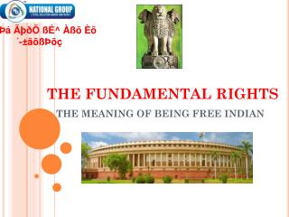 THE FUNDAMENTAL RIGHTS