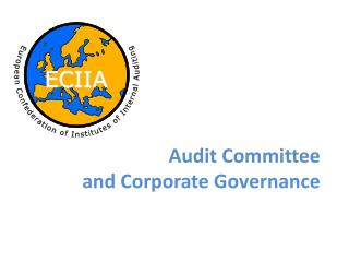Audit Committee  and Corporate Governance