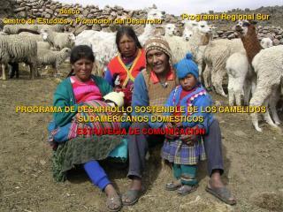 PROGRAMA DE DESARROLLO SOSTENIBLE DE LOS CAMÉLIDOS SUDAMERICANOS DOMÉSTICOS