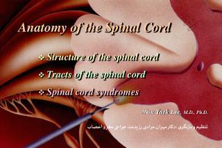 تنظیم و بازنگری :دکتر مهران مرادی رزیدنت جراحی مغز و اعصاب
