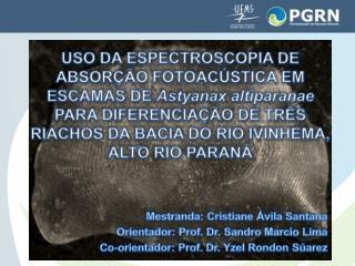 Mestranda: Cristiane Ávila Santana Orientador: Prof. Dr. Sandro Marcio Lima