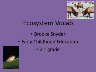 Ecosystem Vocab