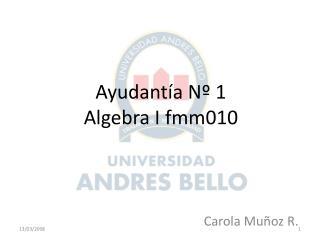 Ayudant�a N� 1 Algebra I fmm010