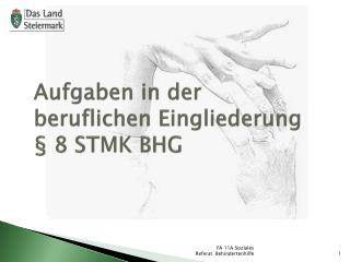 Aufgaben in der beruflichen Eingliederung  � 8 STMK BHG
