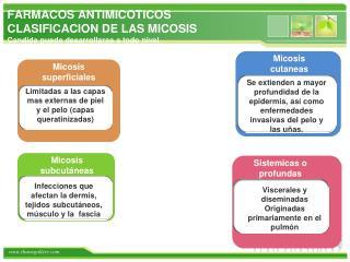 FARMACOS ANTIMICOTICOS CLASIFICACION DE LAS MICOSIS Candida  puede desarrollarse  a  todo nivel