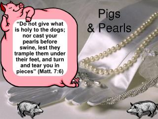 Pigs  & Pearls