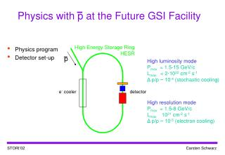 Physics with p at the Future GSI Facility