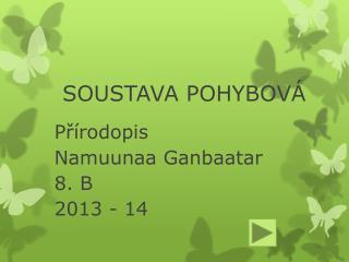 SOUSTAVA POHYBOV�