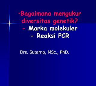 Bagaimana mengukur diversitas genetik? -  Marka molekuler - Reaksi PCR