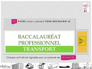 baccalauréat professionnel TRANSPORT