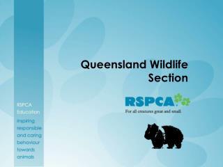 Queensland Wildlife Section