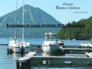 �mondage et coupe d�arbres 2011 - Sommaire