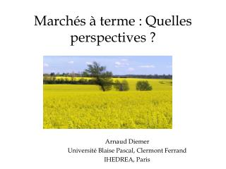 March s   terme : Quelles perspectives