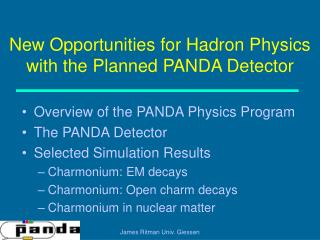 New Opportunities for Hadron Physics with the Planned PANDA Detector