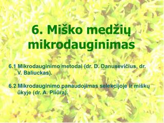 6. Miško medžių  mikrodauginimas