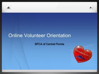 Online Volunteer Orientation