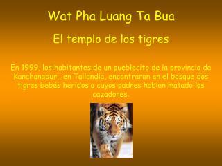 Wat Pha Luang Ta Bua El templo de los tigres