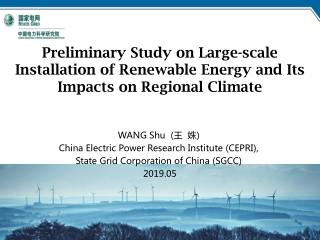 Review Sustainability Development of China s Power Industry over the Ice Disaster at the beginning of 2008  State Grid C