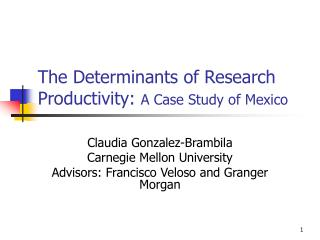 The Determinants of Research Productivity:  A Case Study of Mexico