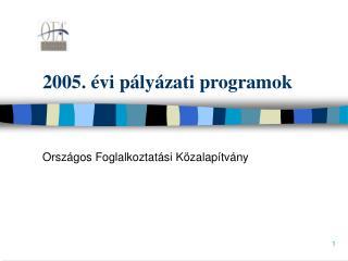 2005. évi pályázati programok