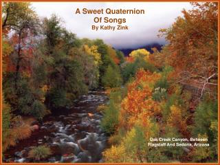 A Sweet Quaternion Of Songs By Kathy Zink