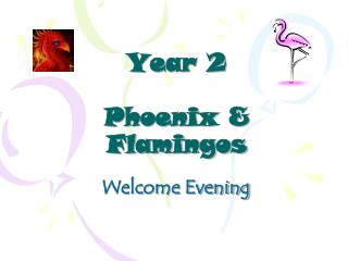 Year 2 Phoenix & Flamingos