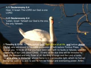 KJV  Deuteronomy 6:4 Hear, O Israel: The LORD our God  is  one LORD: NJB  Deuteronomy 6:4