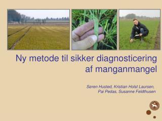 Ny metode til sikker diagnosticering af manganmangel