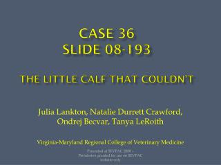 Case 36 Slide 08-193 The little calf that couldn't