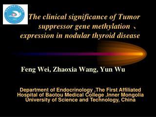 Feng Wei, Zhaoxia Wang, Yun Wu
