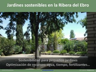 Sostenibilidad para pequeños jardines Optimización de recursos: agua, tiempo, fertilizantes…