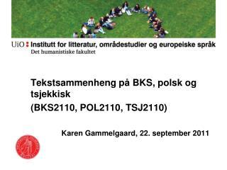 Tekstsammenheng på BKS, polsk og tsjekkisk (BKS2110, POL2110, TSJ2110)