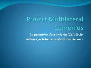 Proiect Multilateral Comenius