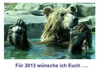 Für 2013 wünsche ich Euch ….