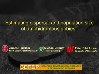 Estimating dispersal and population size  of amphidromous gobies