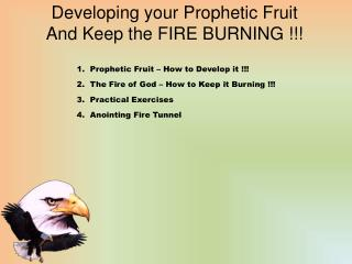 Developing your Prophetic Fruit And Keep the FIRE BURNING !!!