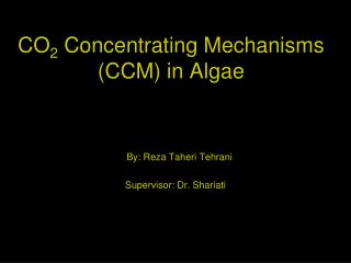 CO 2  Concentrating Mechanisms (CCM) in Algae