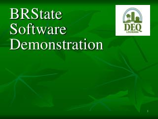 BRState Software Demonstration