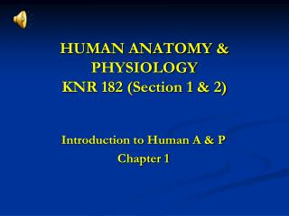 HUMAN ANATOMY & PHYSIOLOGY KNR 182 (Section 1 & 2)