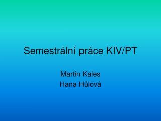 Semestrální práce KIV/PT