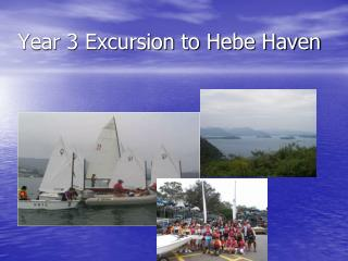 Year 3 Excursion to Hebe Haven