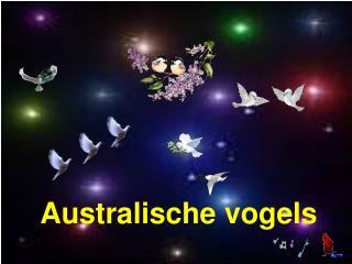 Australische vogels